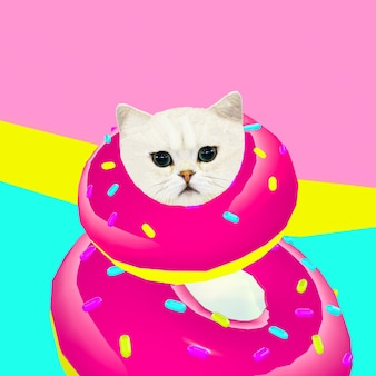 Donut cat. donut lover. contemporary art collage. funny fast food project