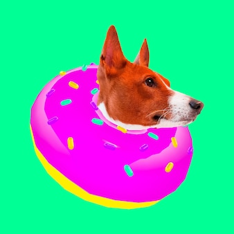 Donut dog. donut lover. contemporary art collage. funny fast food project