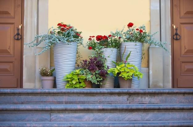 Двери, ступеньки и цветочные горшки. фоновая городская стена.