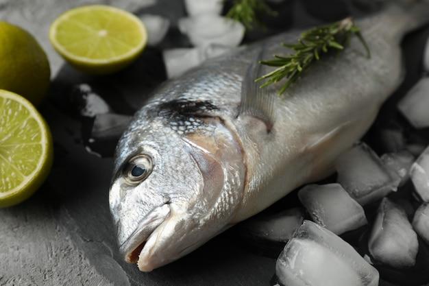 Рыба дорадо, лайм, розмарин и лед на сером
