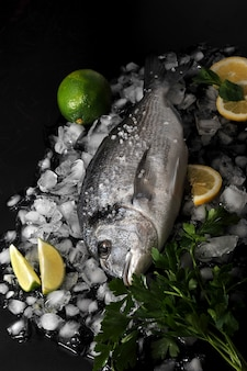Dorado fish lying on ice cubes, salt, parsley, lime and lemon