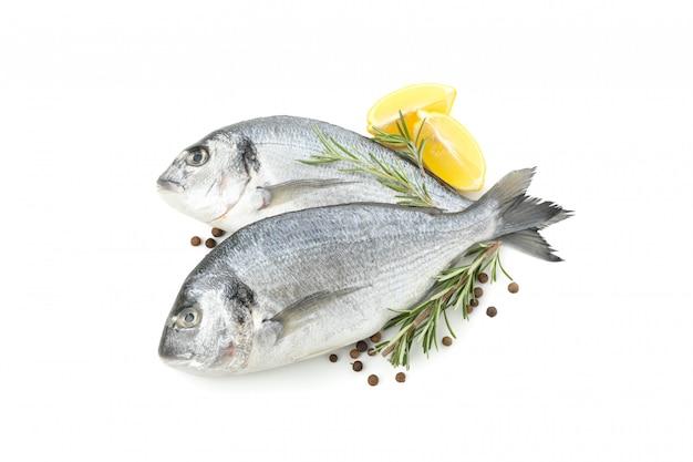 Dorado fishes, lemon, rosemary and pepper isolated on white