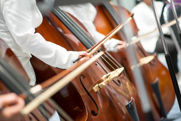 Контрабасист в оркестровом исполнении