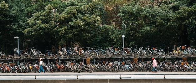 Double-decker bike racks along the sidewalk in front of the national taiwan university