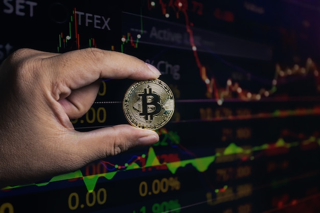 Double exposure of bitcoin hand in economic growth