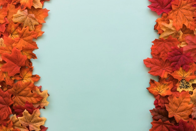 Double sided flat lay of autumn leaves