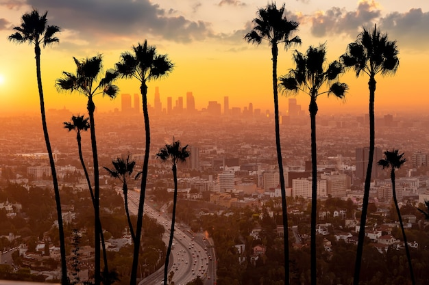 Downtown los angeles city skyline, cityscape of la, united states