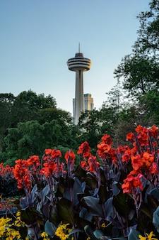 Центр города ниагара-фолс, цветы и башня скайлон