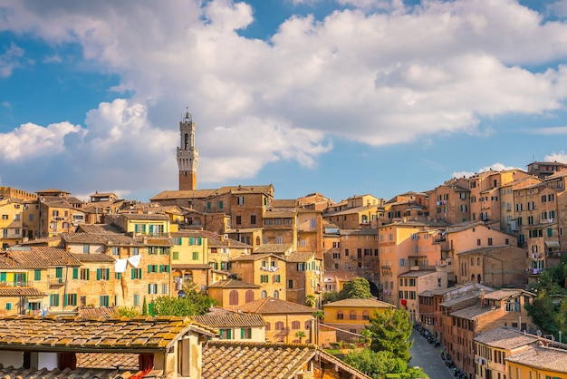 Downtown siena skyline in italy with morning blue sky