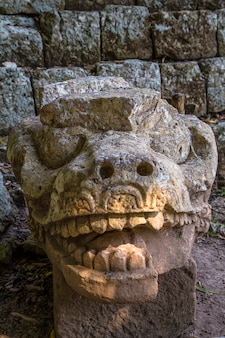 The dragon of the astronomical pyramid of the temples of copan ruinas. honduras