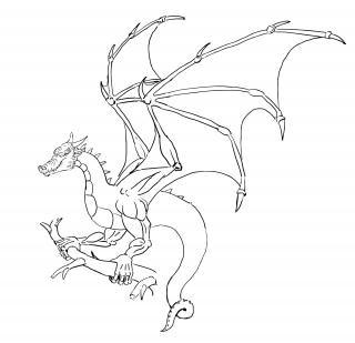 Dragon, omg