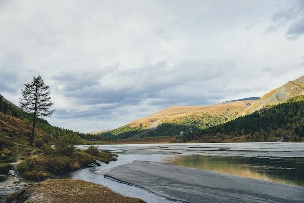 雑多な丘を望む山の湖への水流に金色の日光が反射する劇的な秋の風景。金色の太陽と色とりどりの山々に囲まれたマウンテンクリークの秋の風景。
