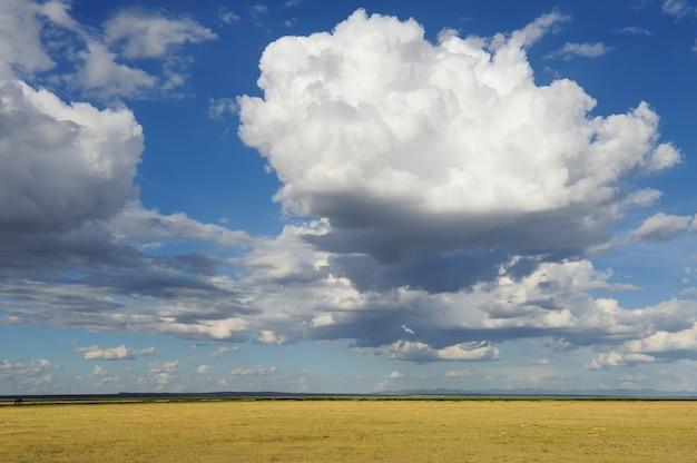 극적인 구름과 광대 한 사바나 초원