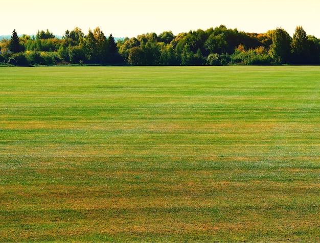 劇的な秋の牧草地の風景の背景