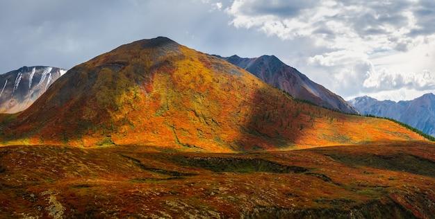 Драматический золотой свет и тень на скале в осенней степи. высокогорное плато ештыколь. горный алтай, панорама.