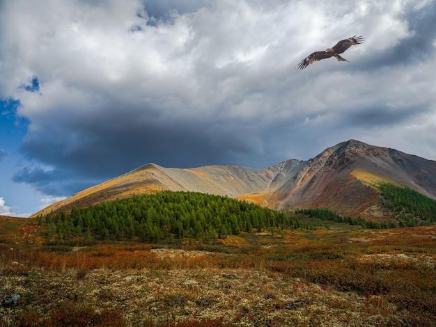 Драматический золотой свет и тень на скале в осенней степи высокогорное плато