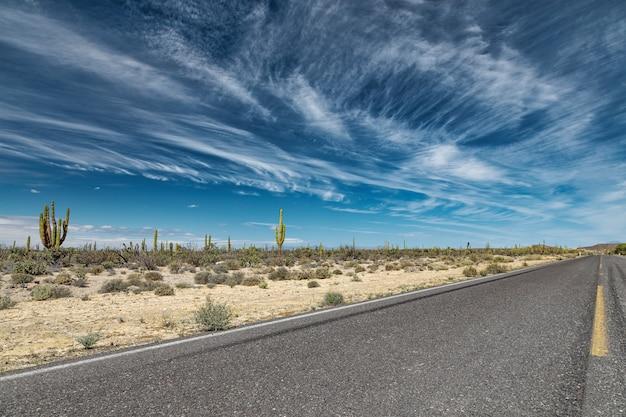 Драматический пейзаж с дорогой через мексиканскую пустыню в сан-игнасио, нижняя калифорния, мексика
