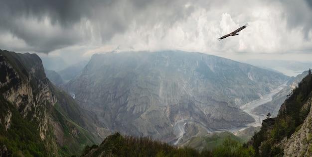 曇り空の下の雑多な岩の間の谷の川と劇的な山の風景。どんよりした空の下、空を飛ぶ鷲の深い峡谷に山の川がある風光明媚な白人の緑の風景。
