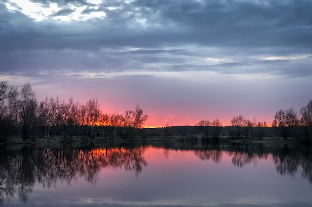 Dramatic pink sunset at forest lake with bare trees silhouette on horizon
