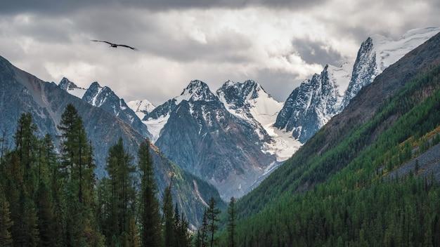 緑の森と低い雲の中で雪の鋭い頂点を持つ劇的な雨の高山の風景。どんよりした天気のとがった岩。低い雲の中のとがった山への大気の素晴らしい眺め。