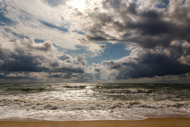 Dramatic sky on a morning seascape. storm on a sandy sea beach.