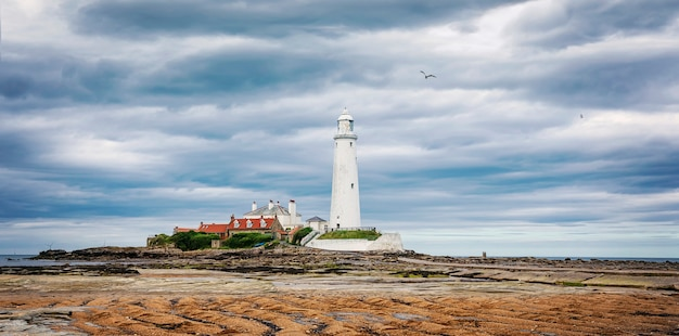 Dramatic sky above st. mary's lighthouse. low tide and seagull. summer seascape. whitley bay, england. uk