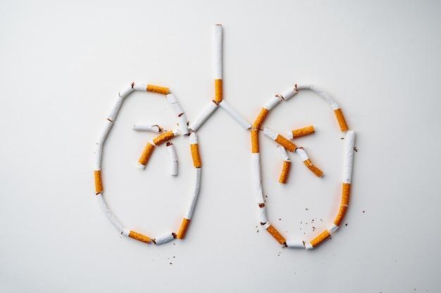 Рисунок легких из сигарет