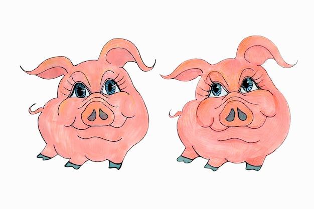 白い背景の上に豚と一緒に描く