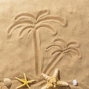 모래와 불가사리에 그려진 야자수, 평면도