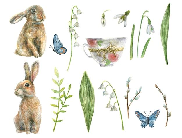 Нарисованный набор милых кроликов весенних трав и белых цветов, ландыша и подснежника, белая винтажная чашка и синяя бабочка