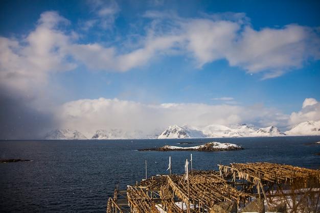 ノルウェー北部のロフォーテン諸島の恐怖と塩漬けのタラ。
