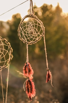 The dream catcher with the forest in the nature