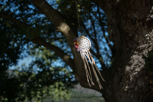 Dream catcher with natural background in vintage style.