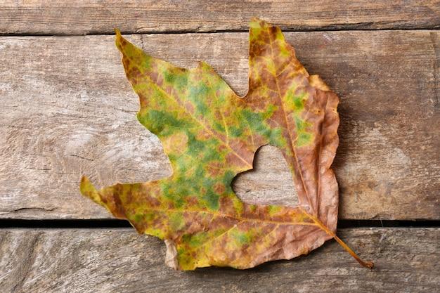 Сушеный осенний лист с вырезанным сердцем на деревянном фоне