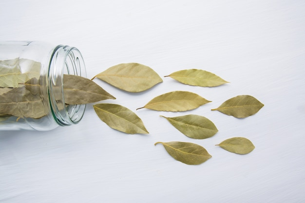 Dried bay leaves in glass jar on white wooden background