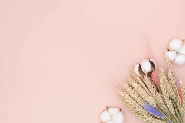 Dried bouquet of rye and cotton on a pink background with a copy space