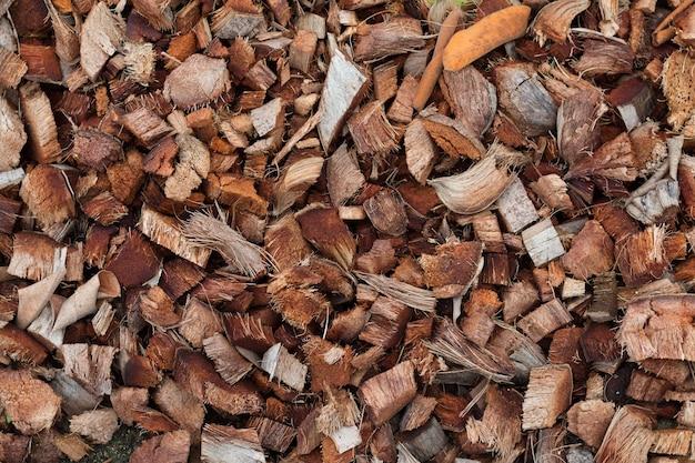 乾燥した茶色のココナッツの背景