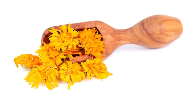 Dried calendula flowers in wooden scoop, isolated on white background. petals of calendula officinalis. medicinal herbs.