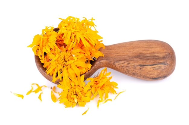 Dried calendula flowers in wooden spoon, isolated on white background. petals of calendula officinalis. medicinal herbs.