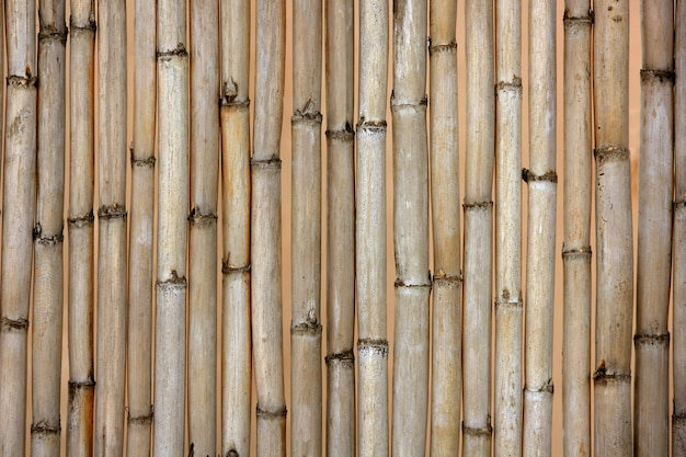 Dried cane texture, typical mediterranean