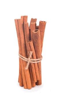 Пучок сушеных палочек корицы с акварельной иллюстрацией природа сырые органические специи из коры дерева