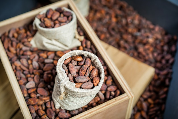 Dried coco beans in the vintage sacks close up.  processed in vintage color tone.