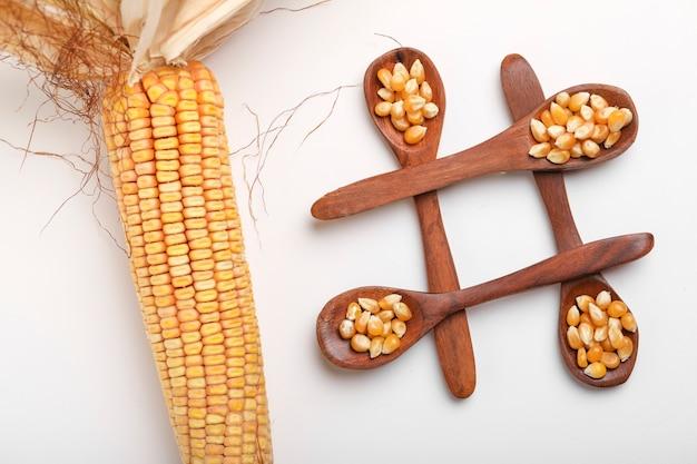 Сушеные семена кукурузы в ложке на белом фоне