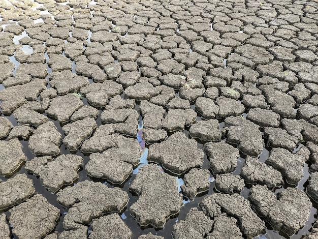 Сушеные потрескавшиеся озера дно фоновой текстуры глобального потепления