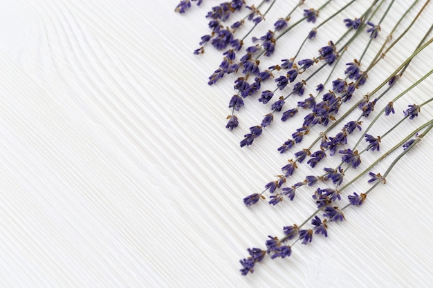 Dried decorative flowers of lavender on white wooden background with copy space.