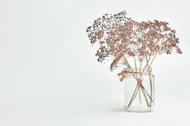 明るい背景のガラスの瓶に乾燥したディルの花