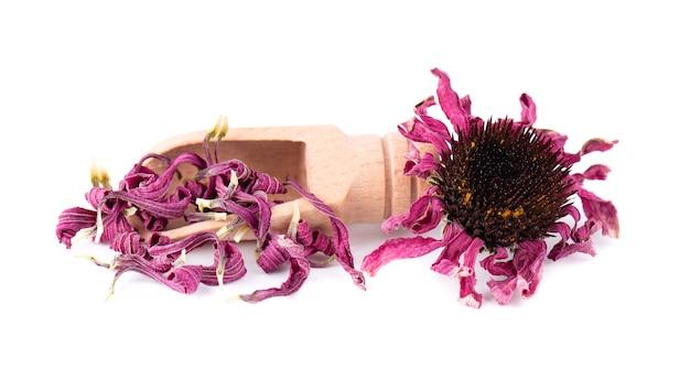 木のスプーンで乾燥エキナセアの花