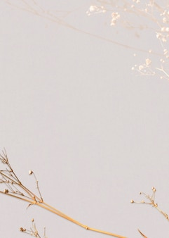Dried floral background natural design space