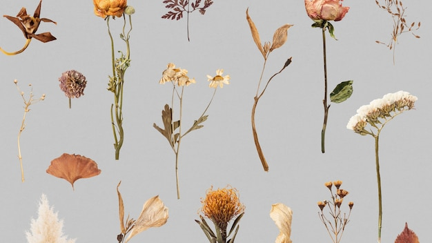 Dried flower and leaf patterned