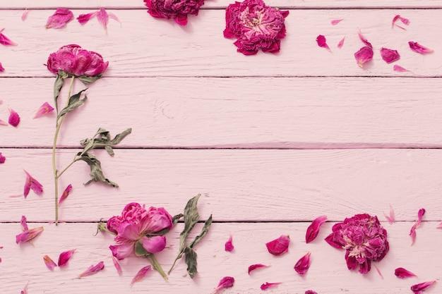 ピンクの木製の背景にドライフラワー